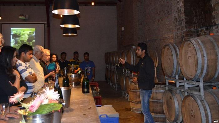 wine tasting at sula vineyards